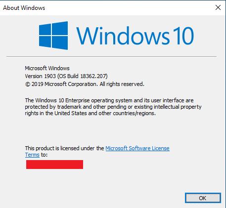 Windows 10 Version 1903 (19H1